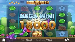 Mega Big Win at Reel Rush slot