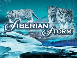Siberian Storm Slot Machine Review
