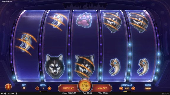How to play Spinsane Slot